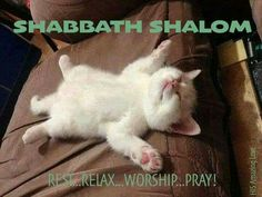 SHABBAT SHALOM   REST...RELAX...WORSHIP...PRAY!