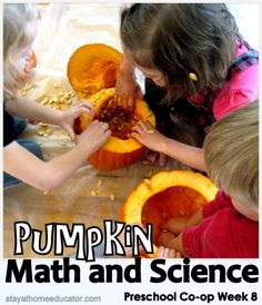 Pumpkin Math and Science Activities