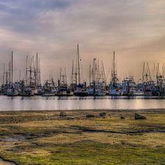 Pilar Pt. Harbor, Half Moon Bay, Ca