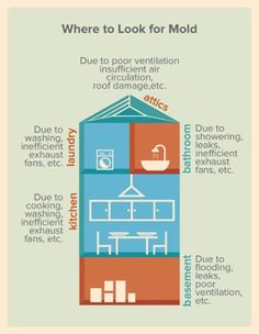 There are places in the #house where #mold usually appears