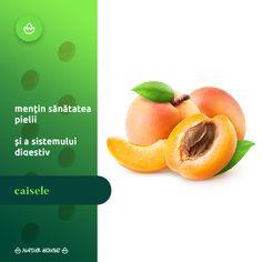 Luna aceasta își fac deja apariția pe piață caisele timpurii, fructe bogate în vitamina A, care contribuie la menținerea sănătății pielii. Este mai puțin cunoscut faptul că până și sâmburii de caise sunt bogați în acizi grași și vitamine. Totodată, caisele sunt utile pentru sănătatea sistemului digestiv și combat constipația. Natur House, Health Fitness, Fruit, Tips, Food, Essen, Meals, Fitness, Yemek