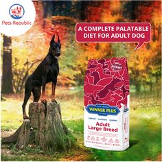 Winner Plus Adult Large Breed - Pets Republic Dog Food Online, Nutritional Requirements, Large Dog Breeds, Omega 3, Acceptance, Healthy Skin, Dog Food Recipes, Salmon, Rice