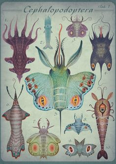 A painting by Vladimir Stankovic of hybrid animal created from butterflies and sea creatures