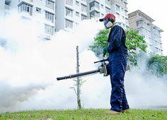 Her türlü haşere ve böcek çeşitlerine karşı garantili ilaçlama hizmeti.