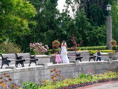 Bride walking through a beautiful garden. Niagara Falls destination wedding. Oakes Garden Theatre is perfect for Elopements @niagaraparkswed  #JoshBellinghamPhotography