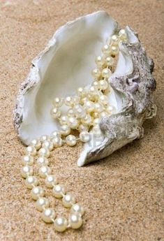 The shell with a pearl beads lies on sand Pearl Beads, Pearl Jewelry, Jewelry Necklaces, Bling Bling, Patchouli Perfume, Swarovski, Pearl And Lace, Jewellery Display, Natural Gemstones