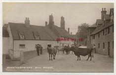 St Albans, Vintage Postcards, Saints, British, Painting, Ebay, Vintage Travel Postcards, Painting Art, Paintings