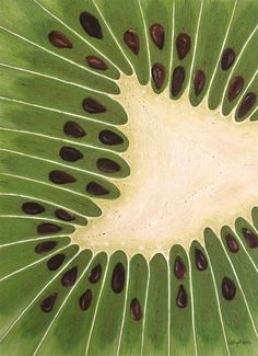 Dive-In Kiwi String Art by Cathy Savels http://cathysavels.com
