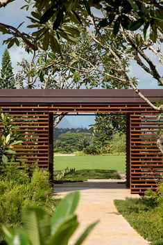 dreamy Hawaiian hillside escape champions indoor-outdoor living