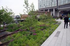 Park High-Line