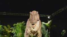 Video of the robotic dinosaurs that moved and roared at the Dinosaurs Alive! Dinosaurs Alive, Parks In Sydney, Dinosaur Images, Lion Sculpture, Statue, Google Search, Animals, Art, Art Background
