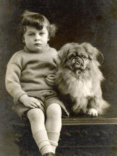 a child with a Pekingese