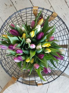 Tulips in a potatobasket