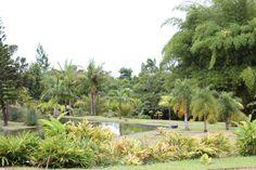 Aula 05 - Jardim Botânico DF