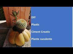 DIY Dovleac din ciment cu plante suculente/Cement pumpkin with succulent plants - YouTube