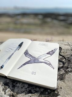 Ball pen on Inspired by my favorite sea bird. The gannet. Sea Birds, Moleskine, Cards Against Humanity, Ocean, Inspired, My Favorite Things, Painting, Inspiration, Biblical Inspiration