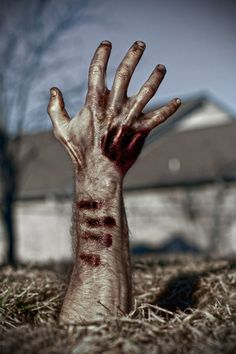 Zombies by GiGi Chickadee Group Art Projects, Photo A Day, Zombies, Apocalypse, Lab, Shutter, Drawings, Madness, Inspiration