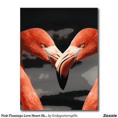 Pink Flamingo Love Heart Shape Valentines Day Postcard