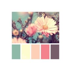 Color Palette Gentle, spring mix of colors is useful for decoration of a bedroom or the whole apartment in Shabby Chic. This palette consists of muted colors that are so. Colour Pallette, Color Palate, Colour Schemes, Color Combos, Design Seeds, Spring Colors, Spring Color Palette, Spring Flowers, Muted Colors