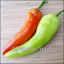 Image result for yellow capsicum