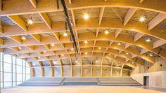 Stunning new wooden sports center in Paris is hidden underneath sprawling green roof