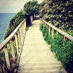 Rose Bay to Watson's Bay walk. | 26 Walks Everyone In Sydney Needs To Add To Their Bucket List