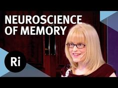 The Neuroscience of Memory - Eleanor Maguire - YouTube