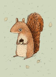 Sarah the Squirrel Art Print by Sophie Corrigan Art And Illustration, Squirrel Illustration, Illustrations Posters, Woodland Illustration, Sketch Manga, Squirrel Art, Posca Art, Art Plastique, Animal Drawings