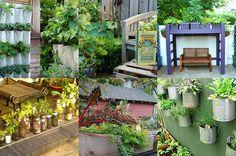 5 Unique vegetable/herb gardens