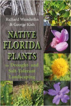Native Florida Plants for Drought- and Salt-Tolerant Landscaping: Richard Wunderlin, George R Kish: Descriptions and photographs for 70 native plants that will thrive with little care in the yards of most Florida homeowners. Covers the peninsula south of Marion, Levy, and Volusia counties through the Keys. #pineapplepress