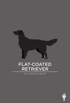 Flat-Coated Retriever Art Print Bethany ng