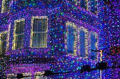 Disneyland @ Christmas