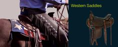 Western Saddles: Barrel, Cutting, Old Time Ranch, Parade, Pleasure, Pony, Ranch, Reining, Roping, Trail, Training, Western Endurance, Western Show, Working, All Around
