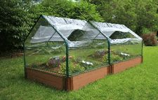 Like the idea of the green house over raised bed. Prolong season, start seed, protection from weather, ease of access as oppposed to diy hoop house? Think of the money you could save with your own green house.