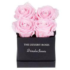 τριανταφυλλα σε κουτι Ribbon, Luxury, Rose, Flowers, Tape, Pink, Band, Ribbon Hair Bows, Roses