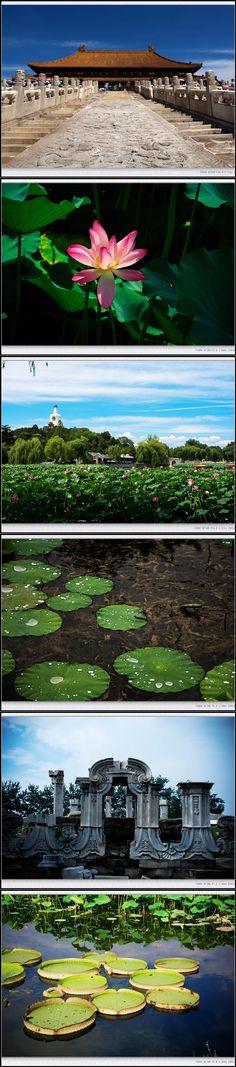 Beijing impression #Beijing #China