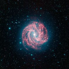 Southern Pinwheel aka Spiral galaxy as seen by Spitzer Space Telescope. Infrared Telescope, Spitzer Space Telescope, Nasa Telescope, Cosmos, Pinwheel Galaxy, Spiral Galaxy, Andromeda Galaxy, Our Solar System, Space Travel
