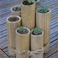 bamboo craft projects   Bamboo Garden How to make a bamboo garden with cactus