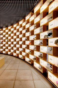 Sneakerology, A Sneaker Store Where Kicks Get Museum Treatment
