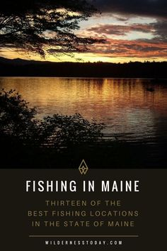 Looking for the best fishing spots in the state of Maine? Look no further than . Looking for the best fishing spots in the state of Maine? Look no further than our detailed guide with all our favorite spots to grab the best local fish! Crappie Fishing, Carp Fishing, Saltwater Fishing, Kayak Fishing, Fishing Boats, Fishing Trips, Fishing Pliers, Fishing Life, Best Fishing