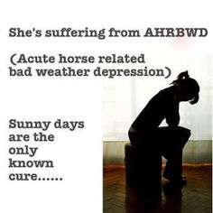 she's suffering from AHRBWD 9acute horse related bad weather depression).   sunny days are the only known cure.  :-)