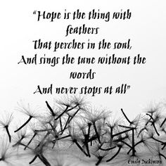 Hope is the thing with feathers That perches in the soul, And sings the tune without the words, And never stops at all...  Poem by Emily Dickinson