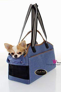 Dog Bag, Chihuahua Puppies, Bucket Bag, Yorkies, Dogs, Victoria, Fashion, Kangaroos, Ideas