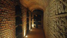 Le cantine del Barolo Wine, Canteen