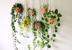 Fall in love all over again with the boho woven decor trend of macrame when you see our favorite ideas to incorporate it into your home. Best Plants For Bedroom, Bedroom Plants, Macrame Plant Holder, Plant Holders, Hanging Plants, Indoor Plants, Indoor Succulents, Indoor Garden, Garden Pots