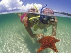 Snorkeling in the Blue Waters of the Bahamas