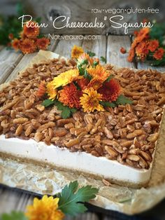 Pecan Cheesecake Squares (raw, gluten-free, dairy-free)