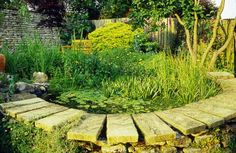 Put in a pond  If there's one feature in the garden guaranteed to attract wildlife with astonishing speed, it's a pond. And at a time when ponds have all but disappeared from farmland, it's a hugely helpful thing to do.