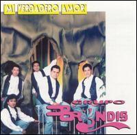 SoundHound - Por Estar Pensando en Ti by Grupo Bryndis