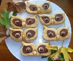 So cute! Owl peanut butter cookies featured.